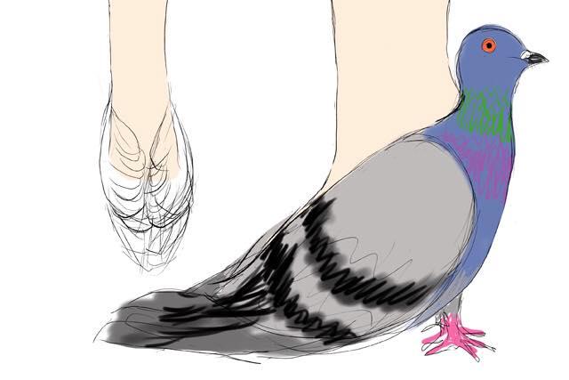 鳩を履く・・・これが天才か・・・